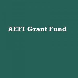 AEFI_DonationsPlaceholders copy